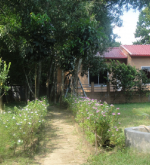 Arshinagar-Holiday-Resort-624x395